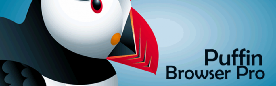 puffin browser pro apk free download for pc