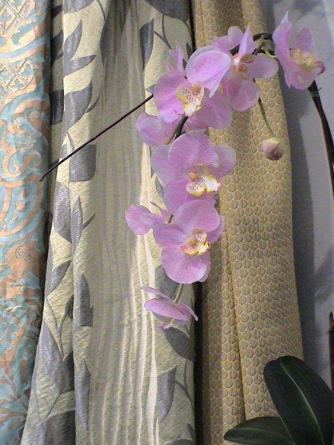 metervarer til gardiner